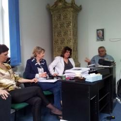 Comisia profesionala
